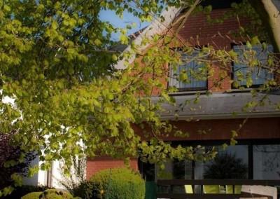B&B Goudsbloempje fotogalerij  tuin  11